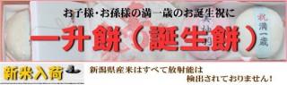 isyomochi_bn2[1]